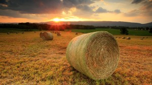 nature-landscapes_hdwallpaper_sunset-on-hay-fields-in-the-shenoah-valley_10063